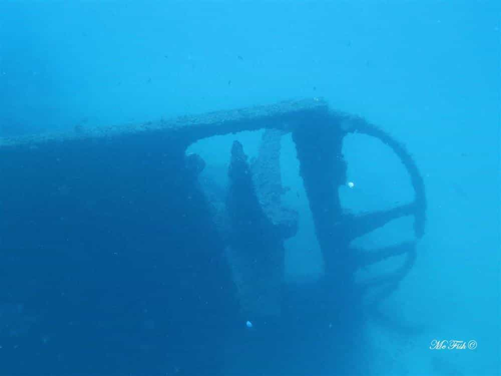 the nebo - aliwal shoal - scubaco