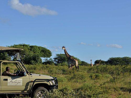 ScubaCo Dive & Safari - falaza game reserve