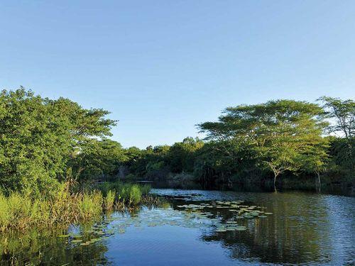 ScubaCo Dive & Safari - Falaza River