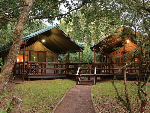 ScubaCo Dive & Safari - Falaza Family Tent