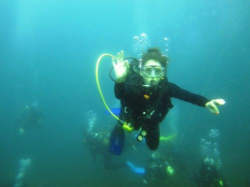 diving aliwal shoal with scubaco