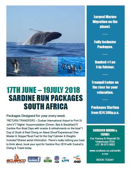 sardine run 2018 - scubaco