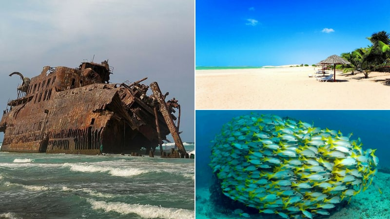 The 11 Best Scuba Diving Locations In Africa